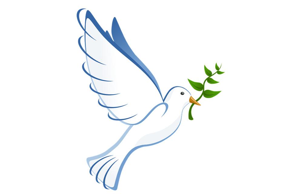 Днем, открытка теща голубь мира